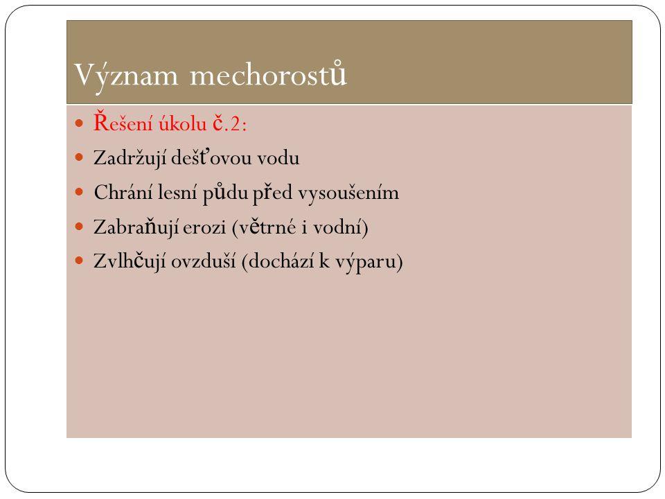 Význam mechorostů Řešení úkolu č.2: Zadržují dešťovou vodu