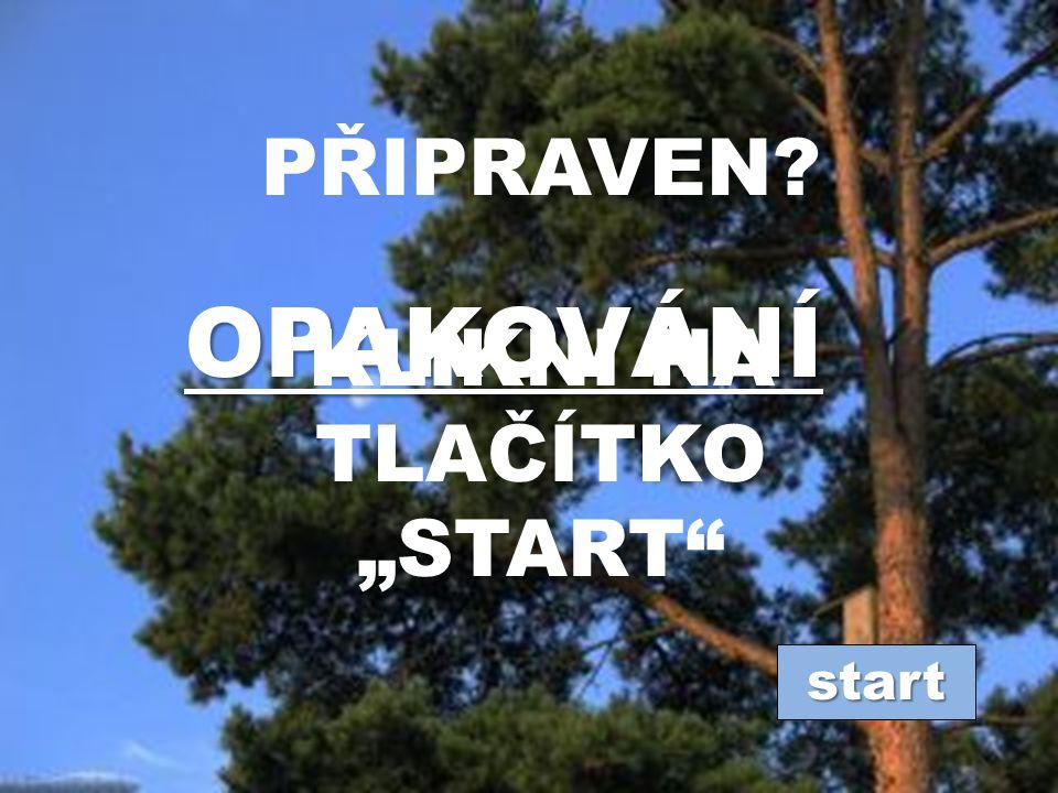 """KLIKNI NA TLAČÍTKO """"START"""