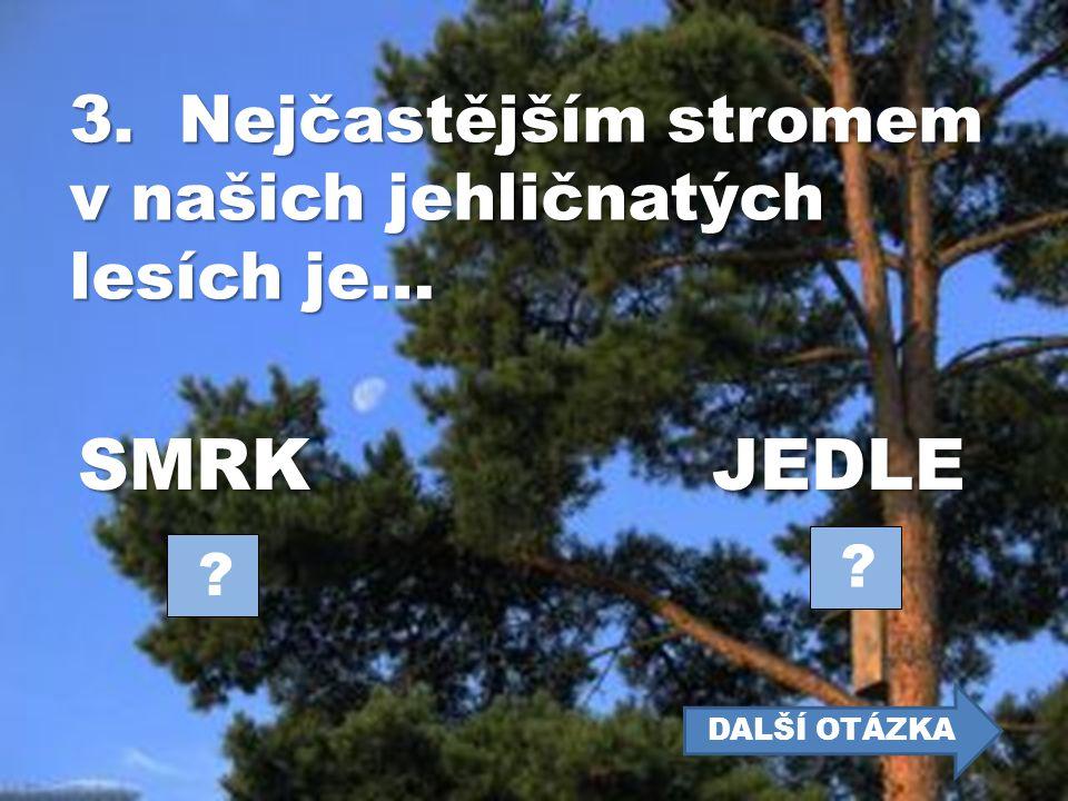 SMRK JEDLE 3. Nejčastějším stromem v našich jehličnatých lesích je…