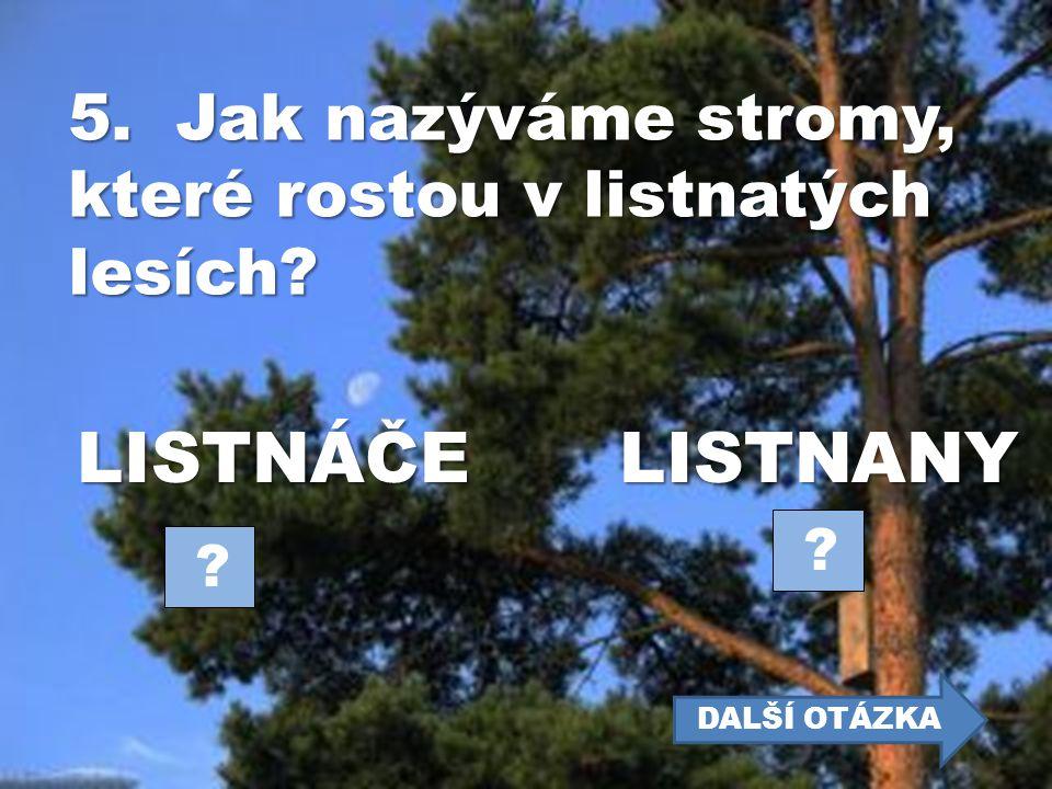 5. Jak nazýváme stromy, které rostou v listnatých lesích