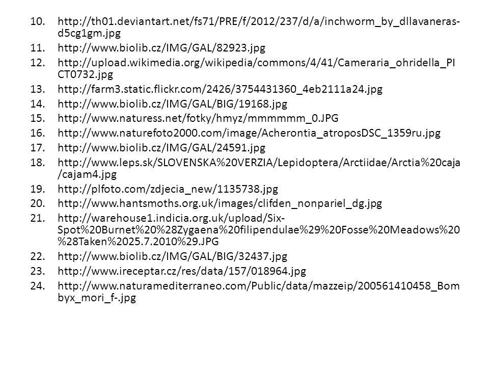 http://th01.deviantart.net/fs71/PRE/f/2012/237/d/a/inchworm_by_dllavaneras-d5cg1gm.jpg http://www.biolib.cz/IMG/GAL/82923.jpg.