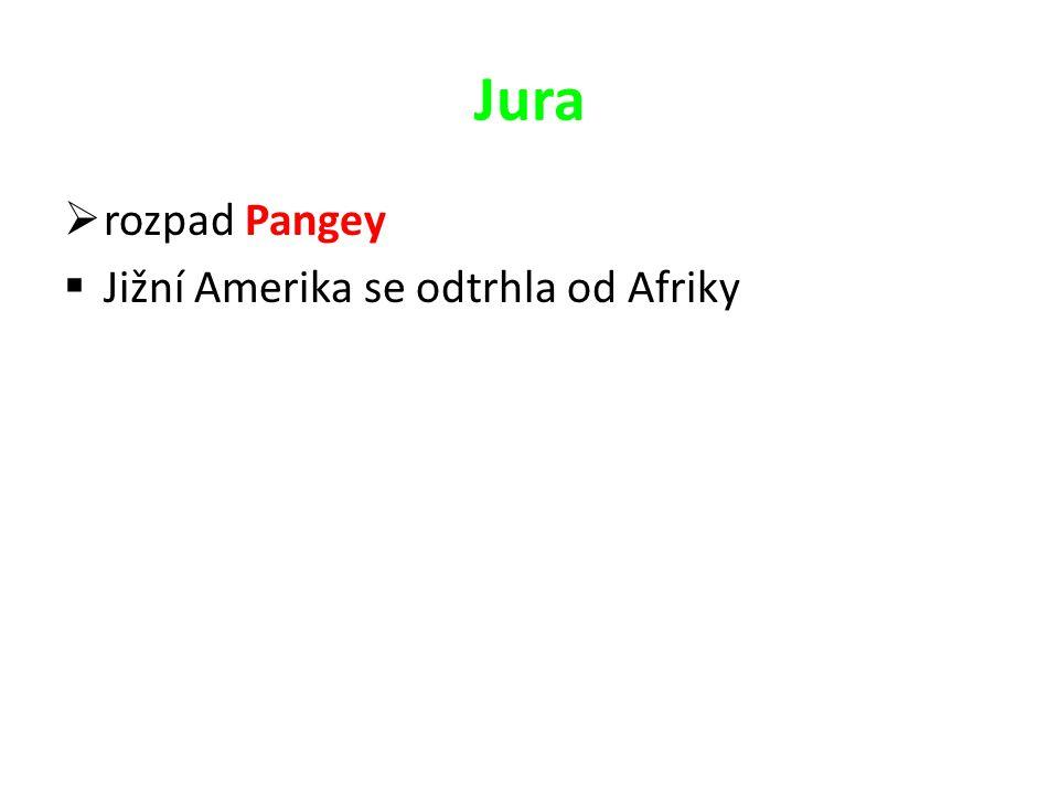 Jura rozpad Pangey Jižní Amerika se odtrhla od Afriky