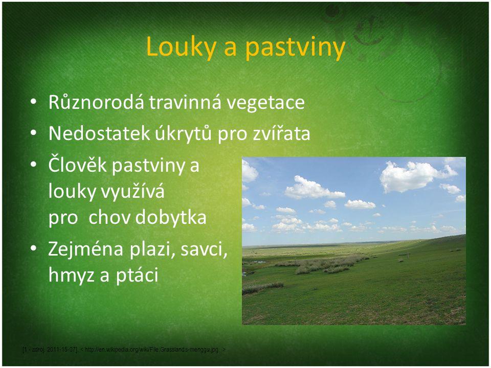 Louky a pastviny Různorodá travinná vegetace