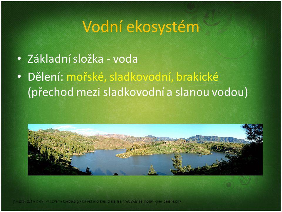 Vodní ekosystém Základní složka - voda