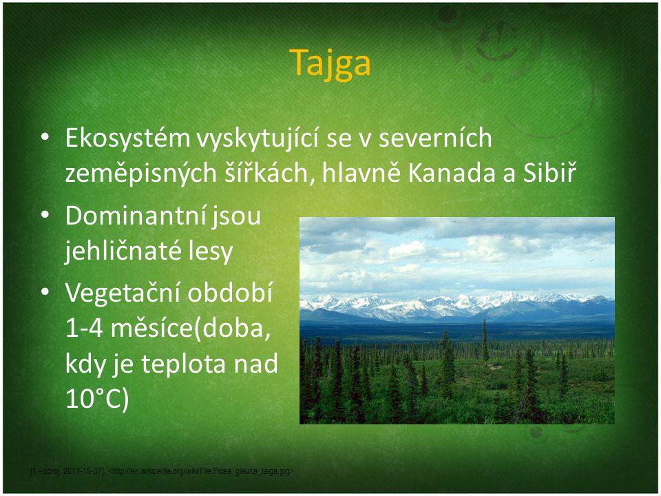 Tajga Ekosystém vyskytující se v severních zeměpisných šířkách, hlavně Kanada a Sibiř. Dominantní jsou jehličnaté lesy.