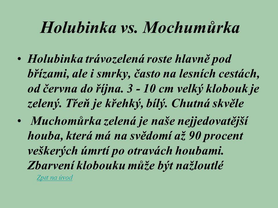 Holubinka vs. Mochumůrka