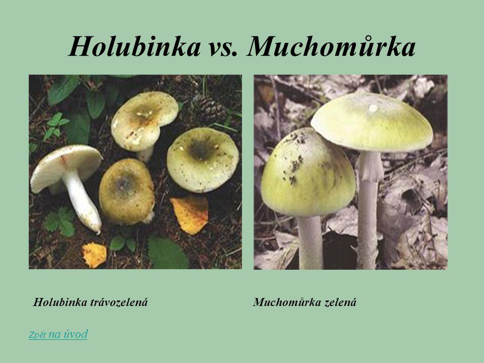Holubinka vs. Muchomůrka