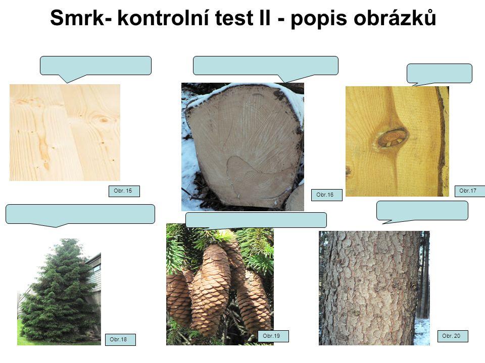 Smrk- kontrolní test II - popis obrázků