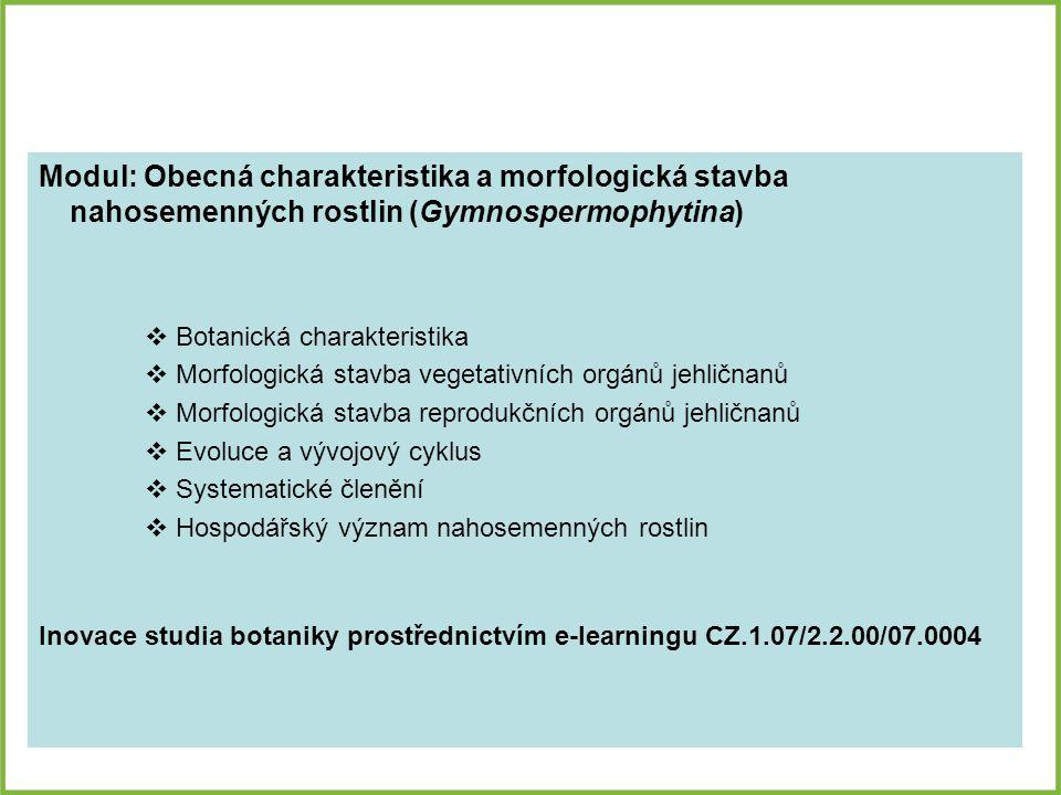 Modul: Obecná charakteristika a morfologická stavba nahosemenných rostlin (Gymnospermophytina)
