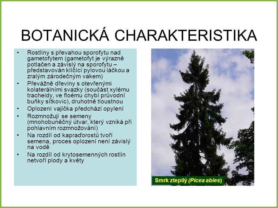 BOTANICKÁ CHARAKTERISTIKA