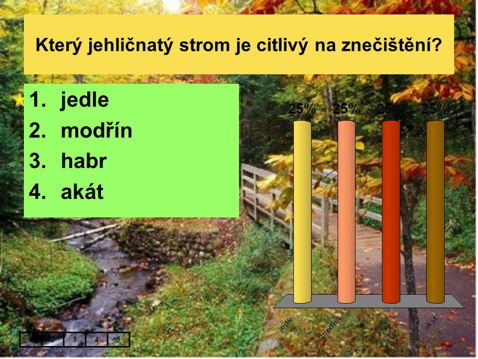 Který jehličnatý strom je citlivý na znečištění