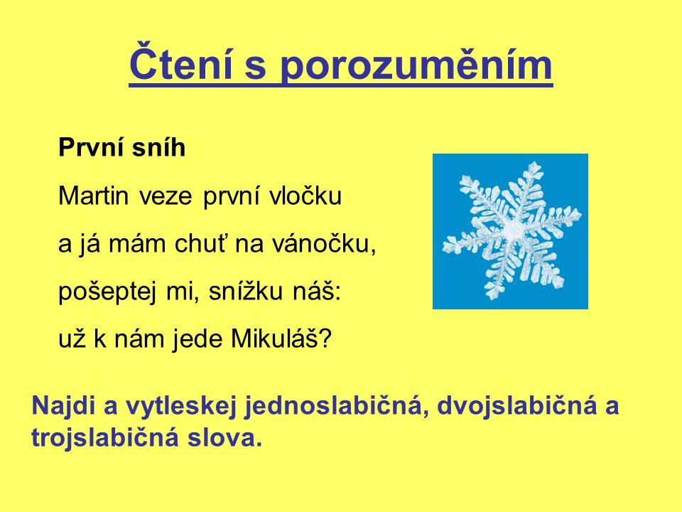 Čtení s porozuměním První sníh Martin veze první vločku