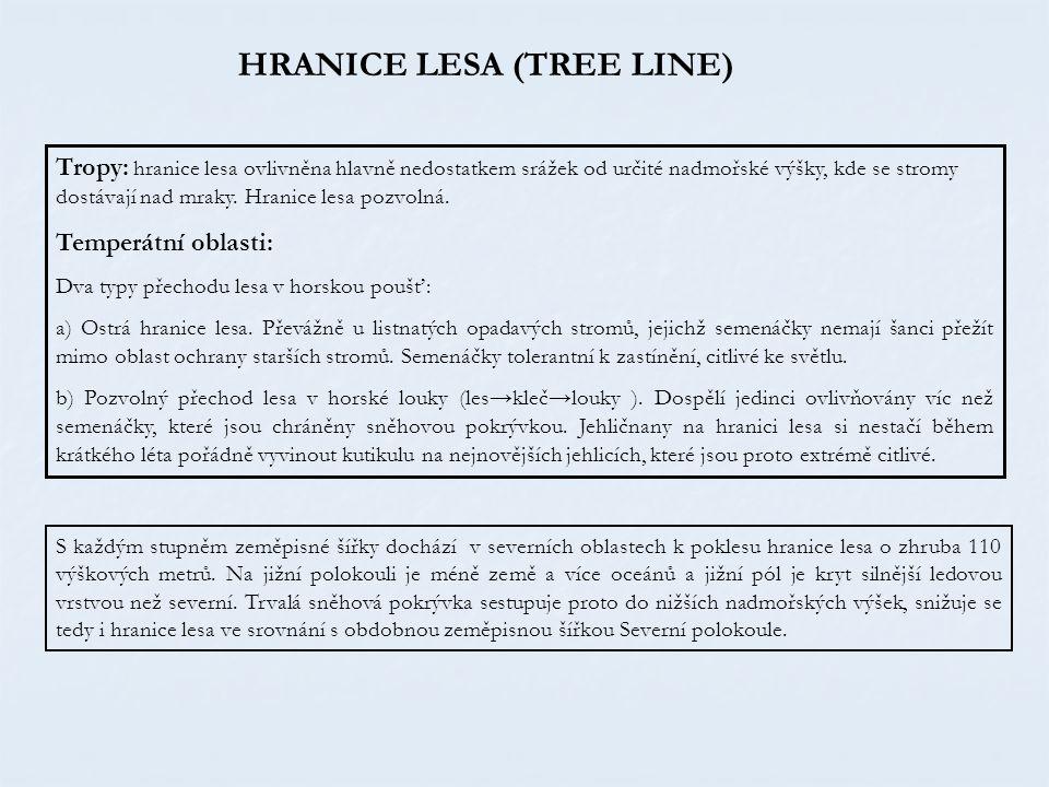 HRANICE LESA (TREE LINE)