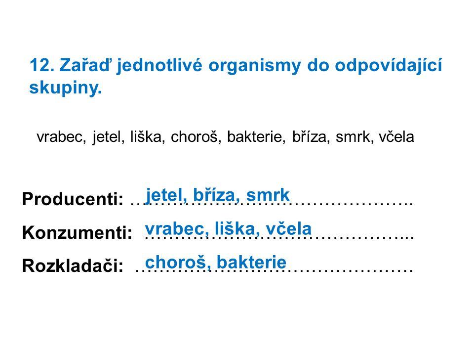 12. Zařaď jednotlivé organismy do odpovídající skupiny.
