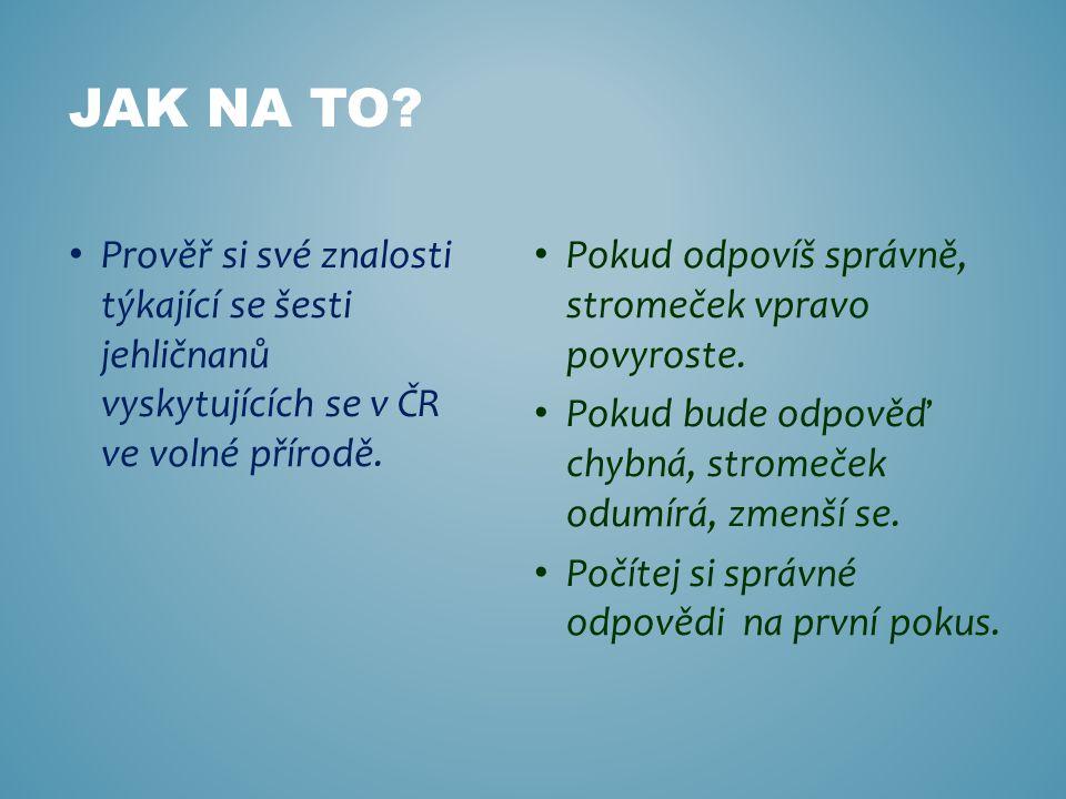 Jak na to Prověř si své znalosti týkající se šesti jehličnanů vyskytujících se v ČR ve volné přírodě.