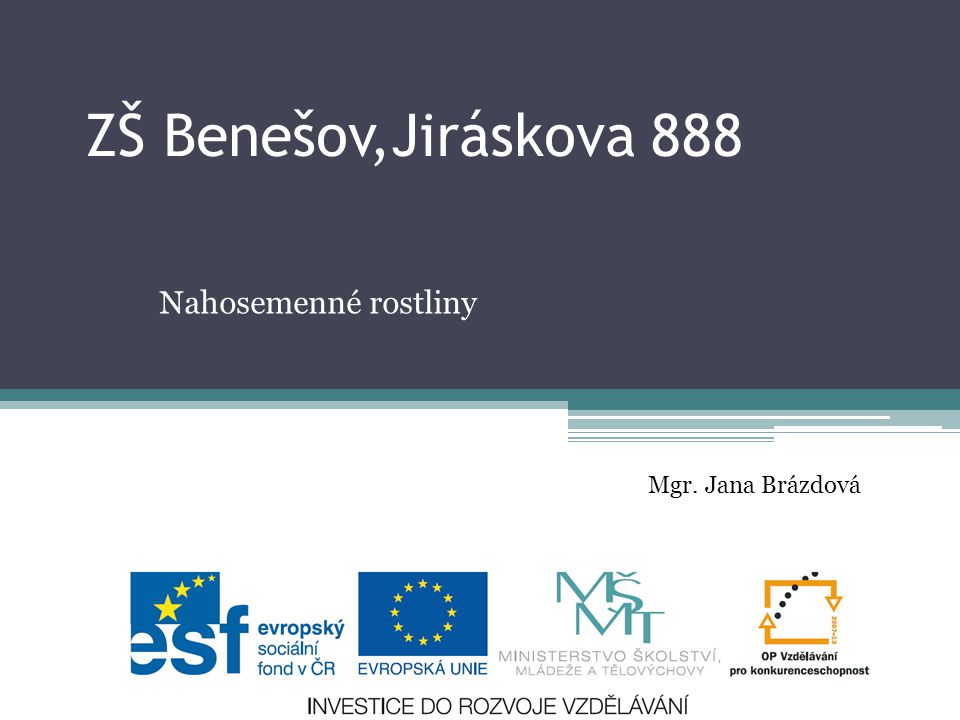 ZŠ Benešov,Jiráskova 888 Nahosemenné rostliny Mgr. Jana Brázdová