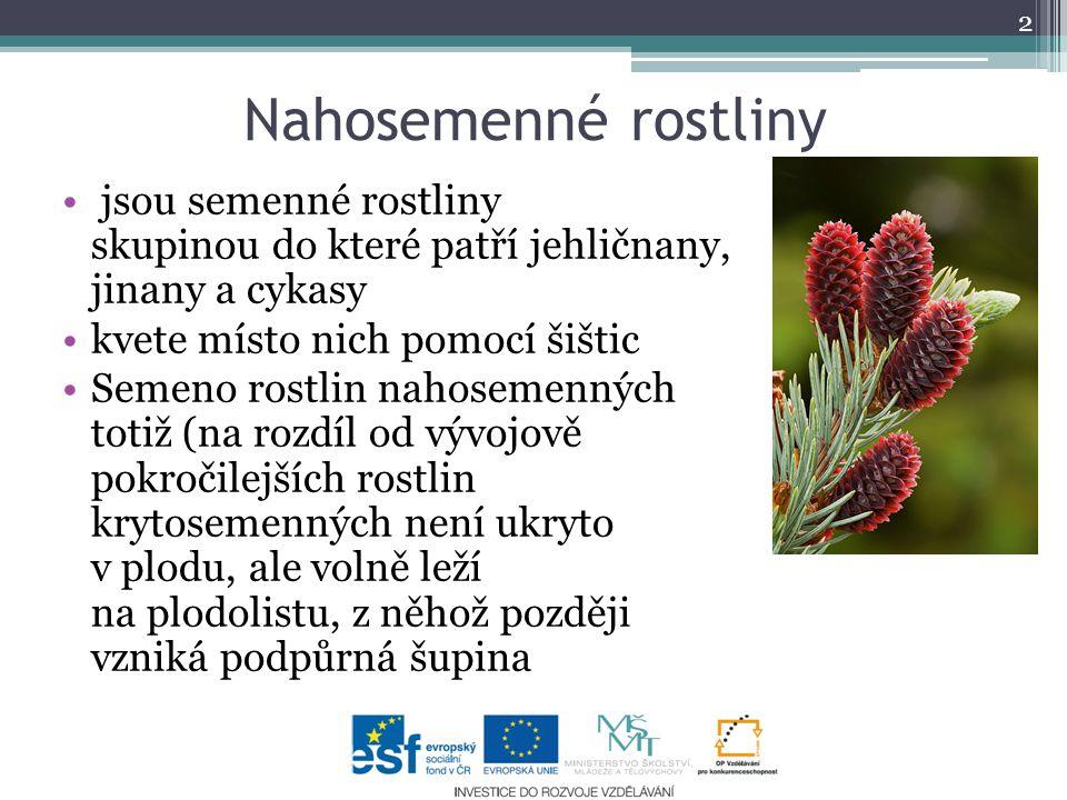 Nahosemenné rostliny jsou semenné rostliny skupinou do které patří jehličnany, jinany a cykasy.