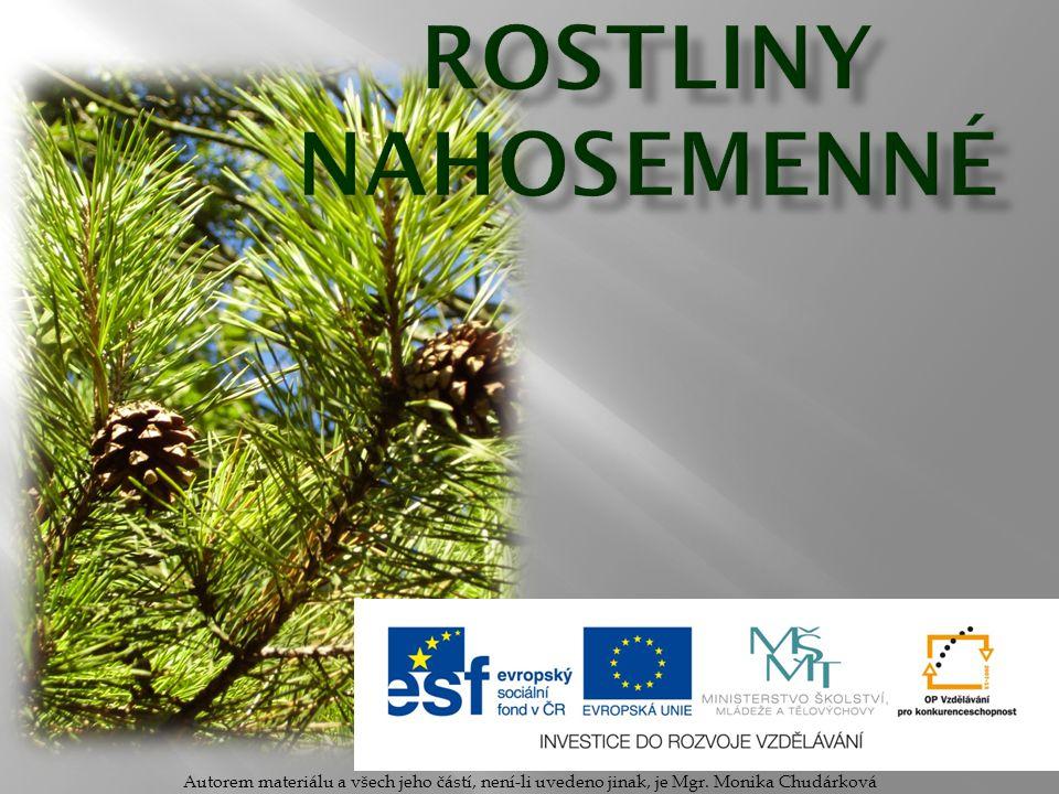 Rostliny Nahosemenné Autorem materiálu a všech jeho částí, není-li uvedeno jinak, je Mgr.