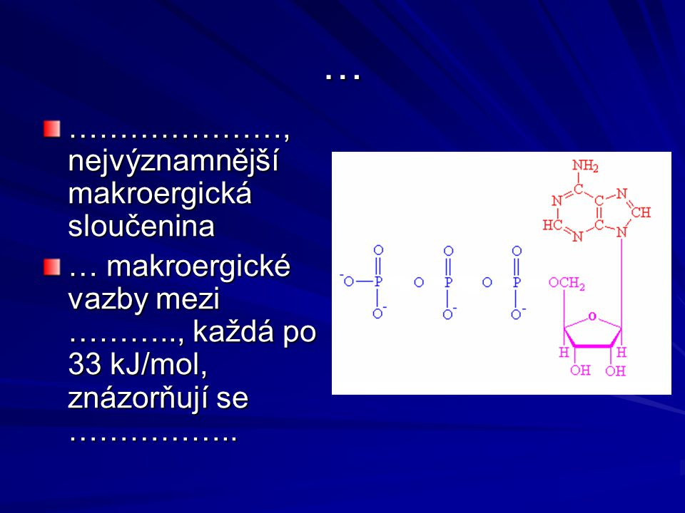… …………………, nejvýznamnější makroergická sloučenina
