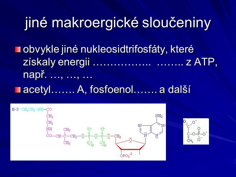 jiné makroergické sloučeniny
