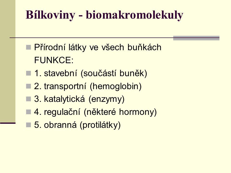 Bílkoviny - biomakromolekuly