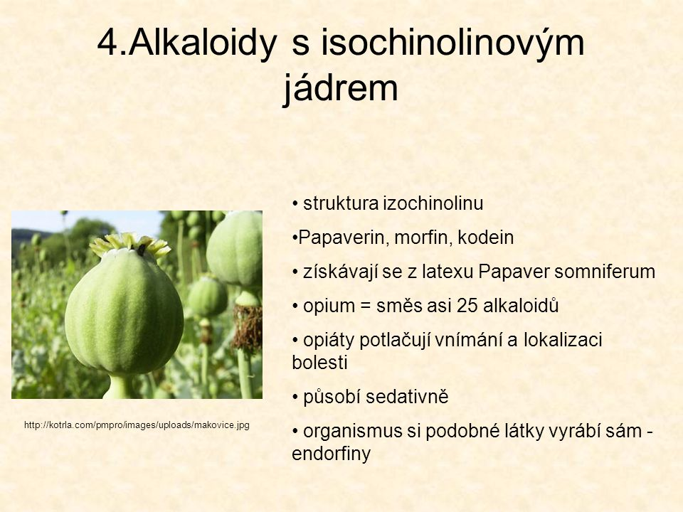 4.Alkaloidy s isochinolinovým jádrem