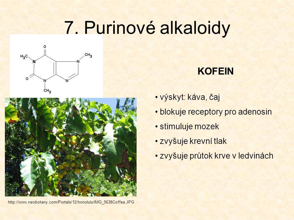 7. Purinové alkaloidy KOFEIN výskyt: káva, čaj