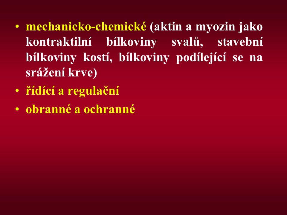 mechanicko-chemické (aktin a myozin jako kontraktilní bílkoviny svalů, stavební bílkoviny kostí, bílkoviny podílející se na srážení krve)