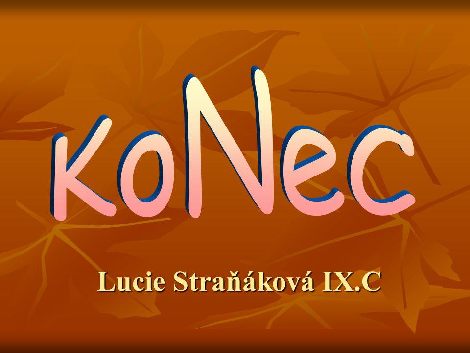 KoNeC Lucie Straňáková IX.C