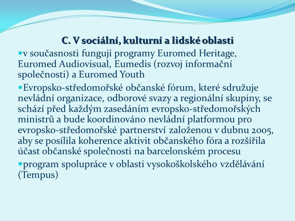 C. V sociální, kulturní a lidské oblasti