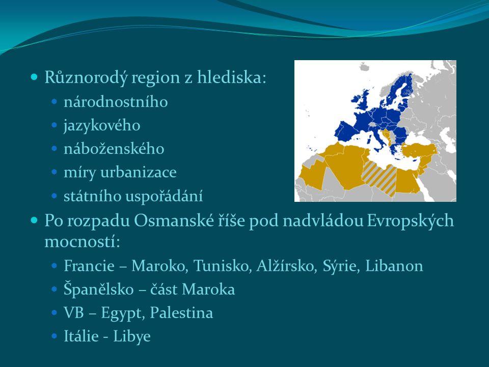 Různorodý region z hlediska: