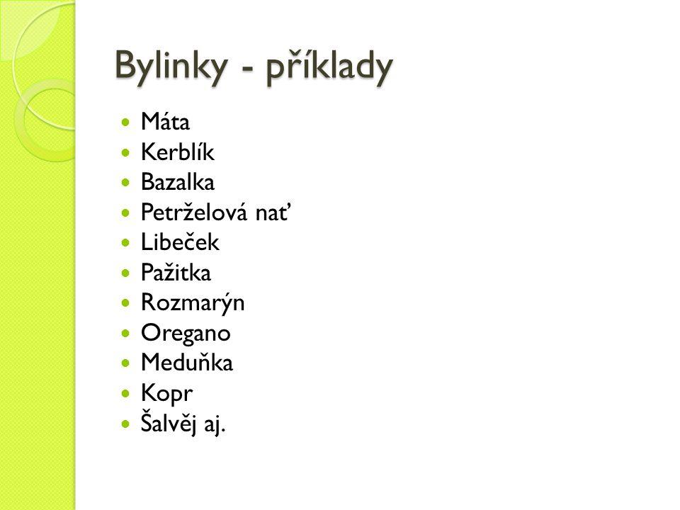Bylinky - příklady Máta Kerblík Bazalka Petrželová nať Libeček Pažitka