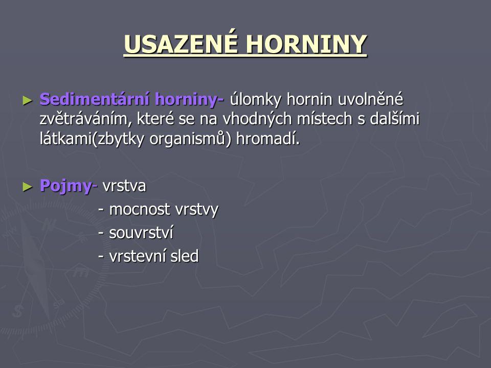 USAZENÉ HORNINY Sedimentární horniny- úlomky hornin uvolněné zvětráváním, které se na vhodných místech s dalšími látkami(zbytky organismů) hromadí.