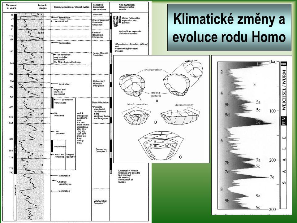 Klimatické změny a evoluce rodu Homo
