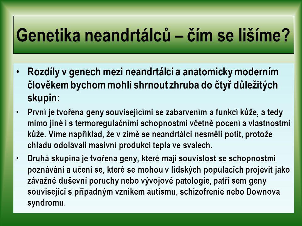 Genetika neandrtálců – čím se lišíme