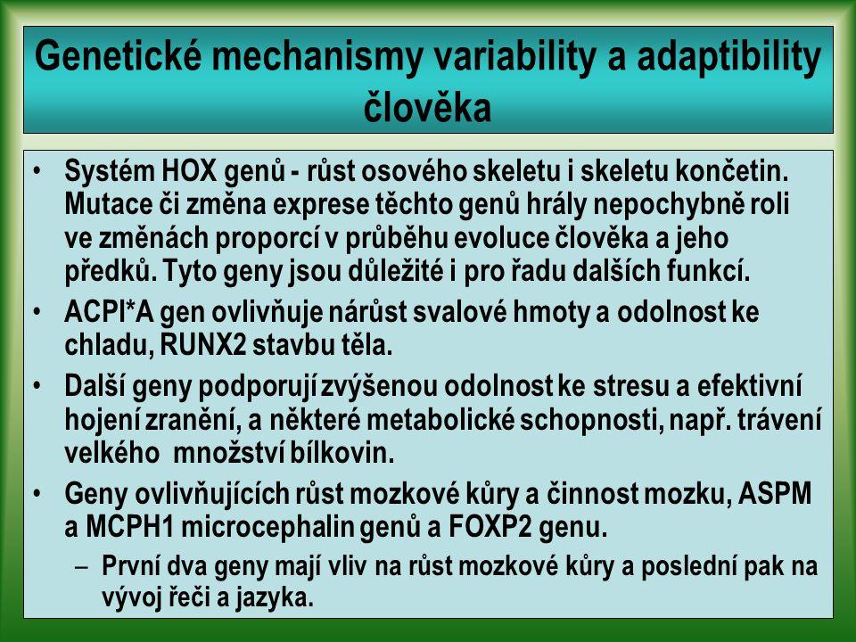 Genetické mechanismy variability a adaptibility člověka