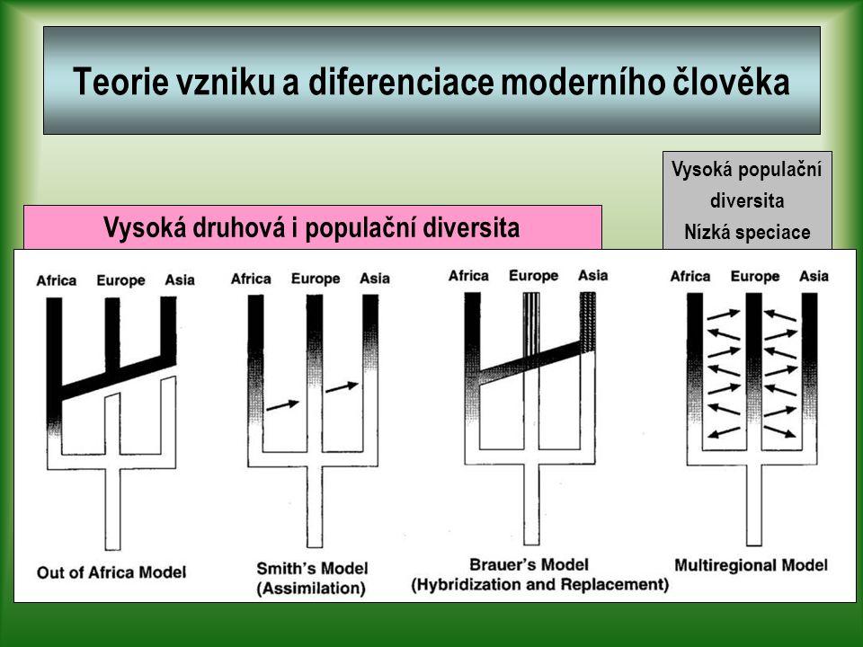 Teorie vzniku a diferenciace moderního člověka