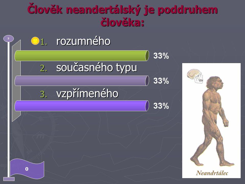 Člověk neandertálský je poddruhem člověka: