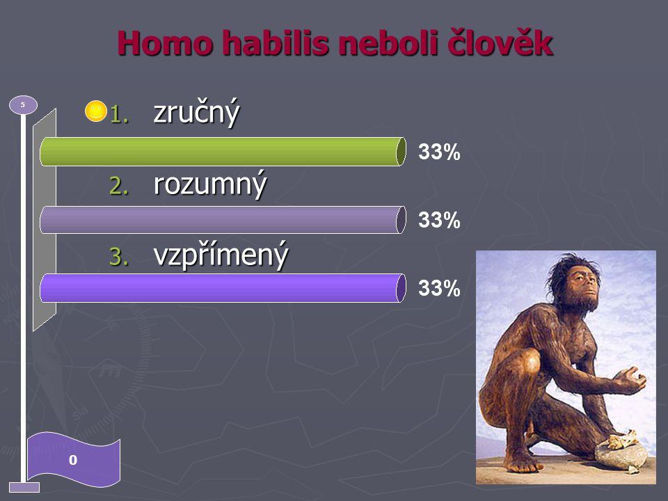Homo habilis neboli člověk