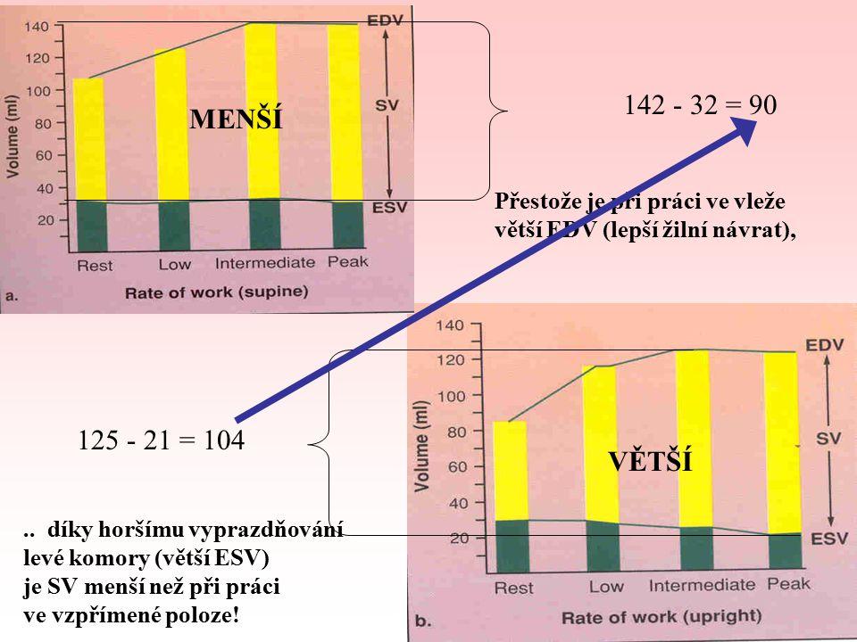 MENŠÍ 142 - 32 = 90. Přestože je při práci ve vleže. větší EDV (lepší žilní návrat), 125 - 21 = 104.