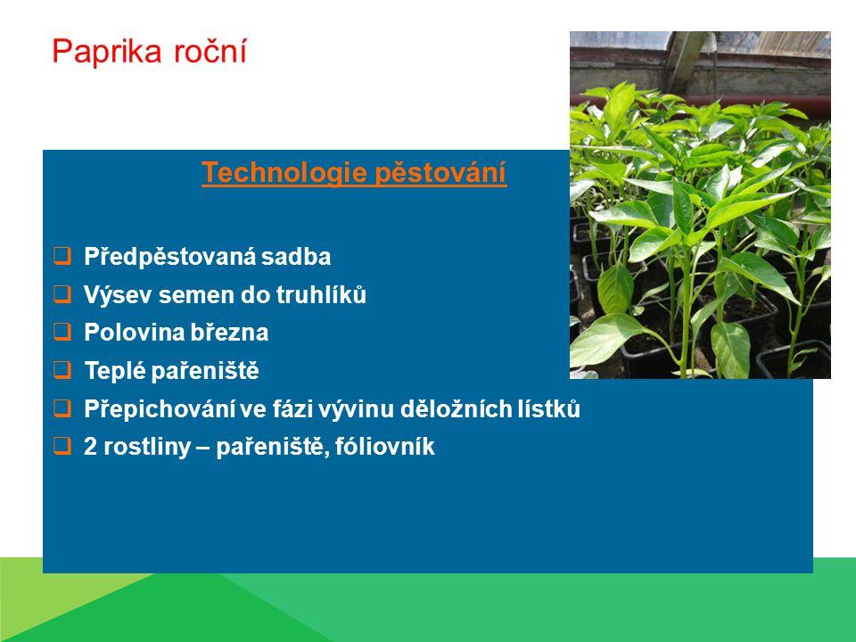 Paprika roční Technologie pěstování Předpěstovaná sadba