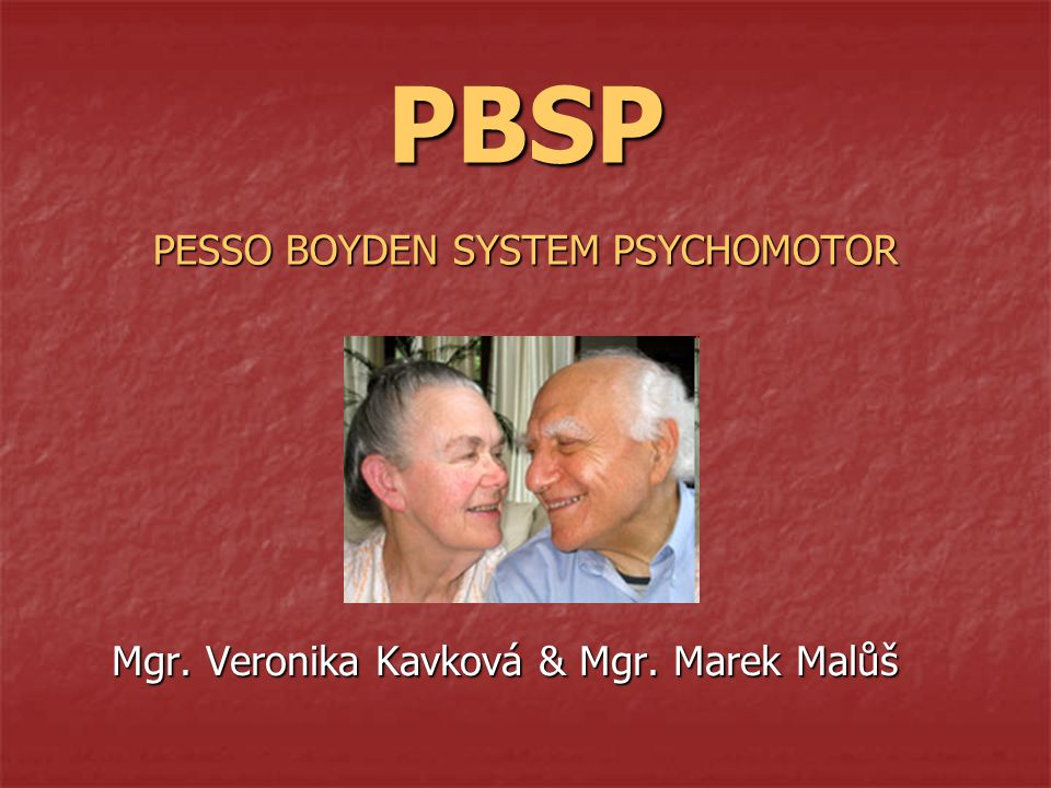 PBSP PESSO BOYDEN SYSTEM PSYCHOMOTOR