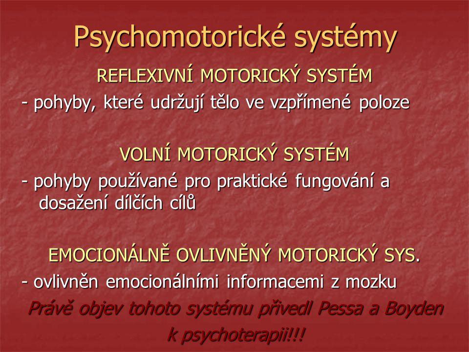 Psychomotorické systémy