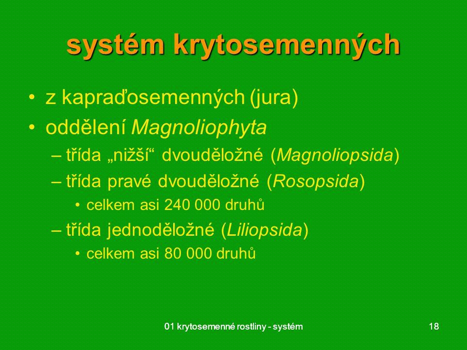 systém krytosemenných