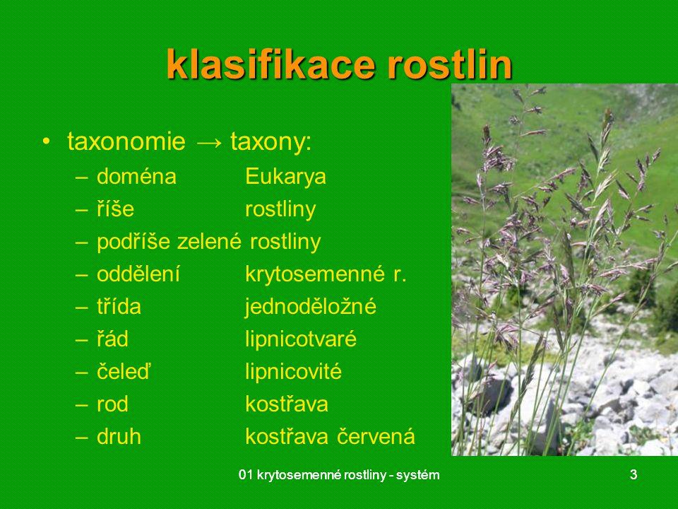 klasifikace rostlin taxonomie → taxony: doména Eukarya říše rostliny