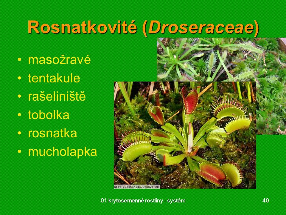 Rosnatkovité (Droseraceae)