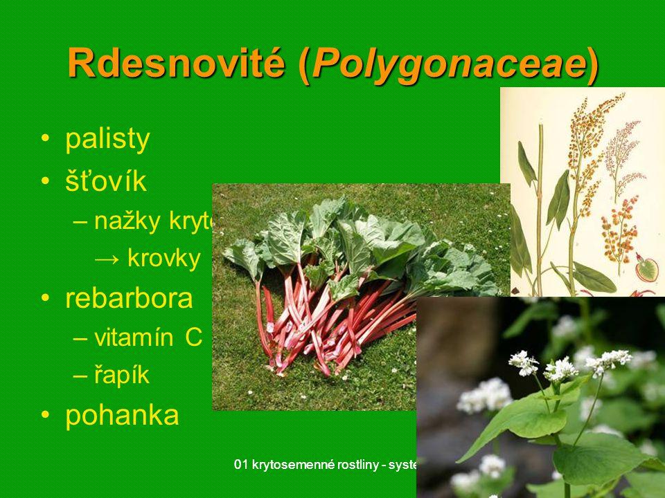 Rdesnovité (Polygonaceae)