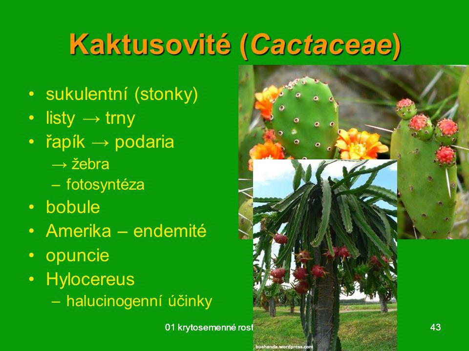 Kaktusovité (Cactaceae)