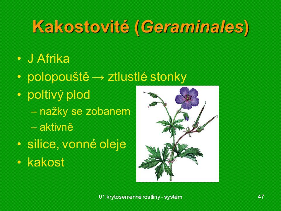 Kakostovité (Geraminales)