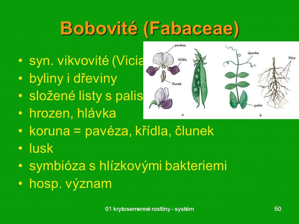 Bobovité (Fabaceae) syn. vikvovité (Viciaceae) byliny i dřeviny